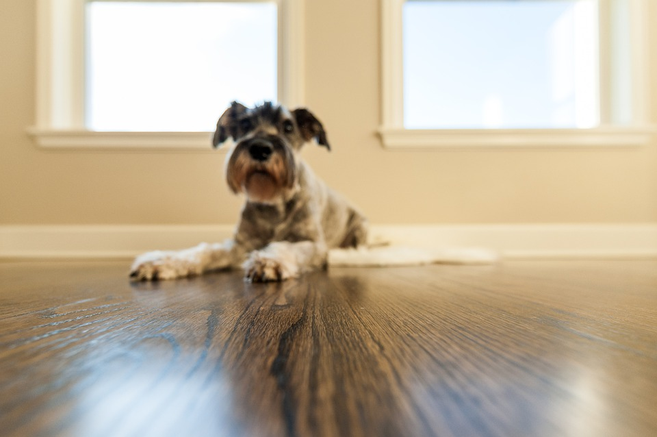hardwood floor refinishing vancouver